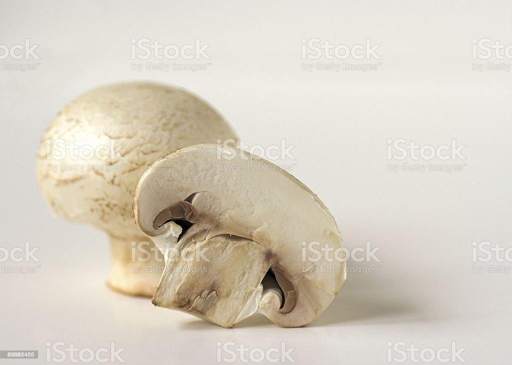Botão de cogumelos foto de stock royalty-free