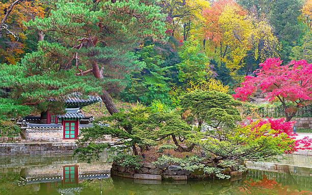 buyeongji teich im huwon park, den geheimen garten - der geheime garten stock-fotos und bilder