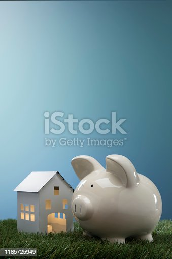 This is a photograph of a small toy country home with a piggy bank to symbolize buying any House, investment, mortgage, etc.