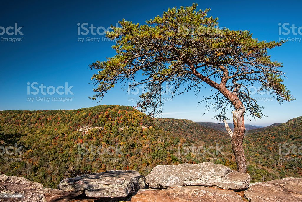 Buzzards Roost Over Look At Fall Creek Falls State Park stock photo