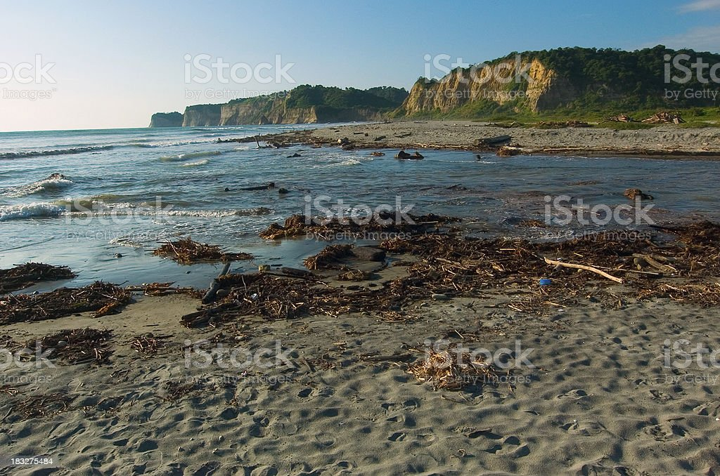 By the beach in Ecuador royalty-free stock photo