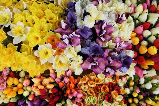 Bydgoszcz - Spring flowers stock photo