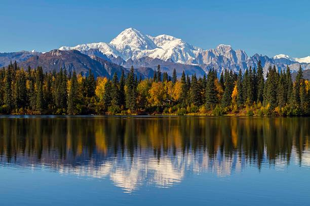 byers lake alaska fall with mount mckinley, denali, background - denali national park bildbanksfoton och bilder
