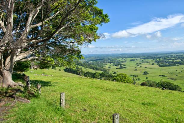 Byron Shire landscape in the sumer. In Australia. stock photo