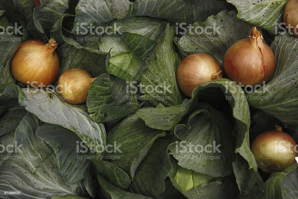 Cabbage and onions royalty-free stock photo