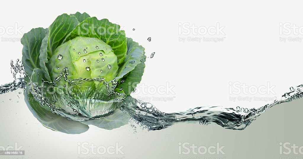 Cabbage and spray water. stock photo