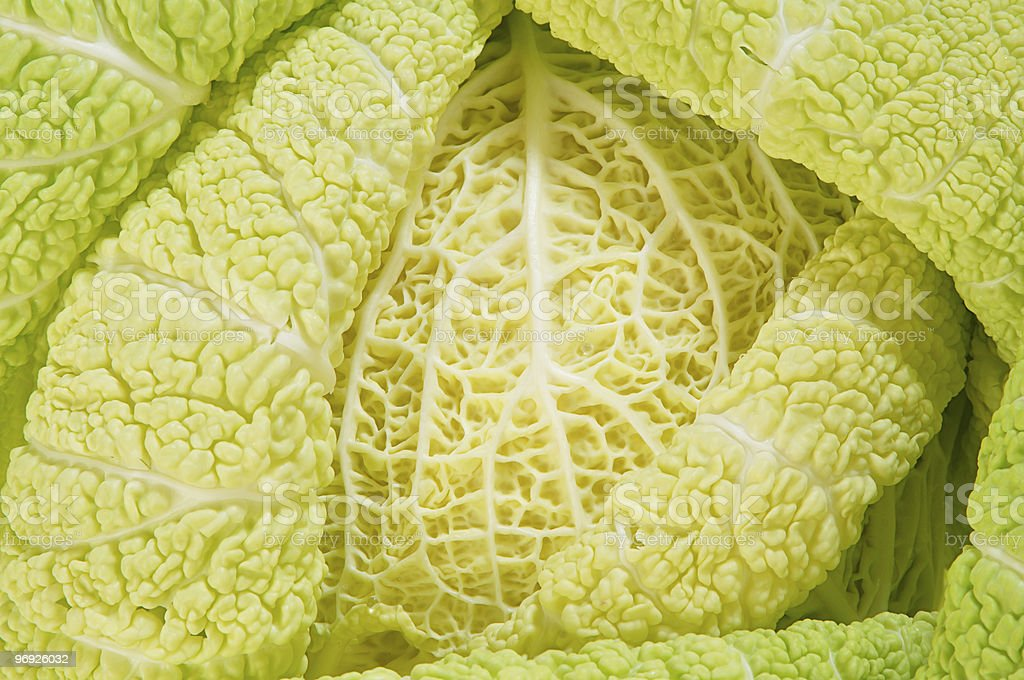 Cabbage as background of bends royalty-free stock photo