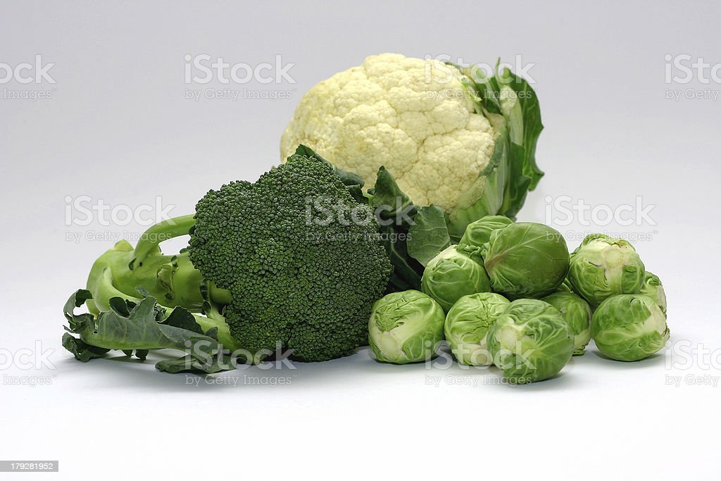 Cabbage Family royalty-free stock photo