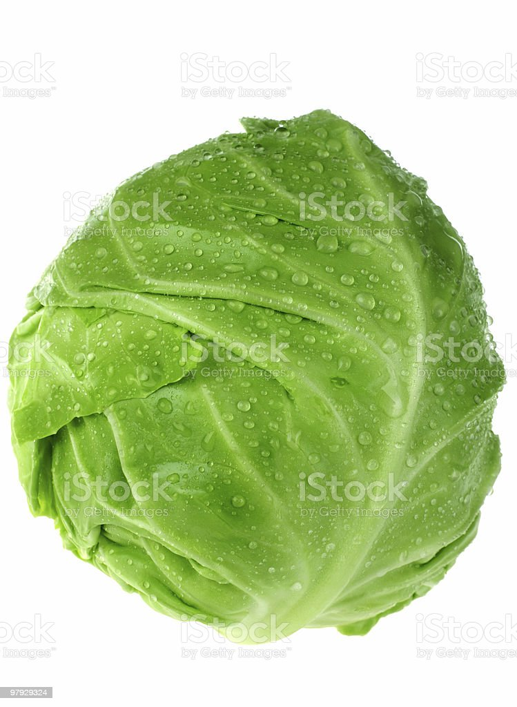 Cabbage fresh royalty-free stock photo