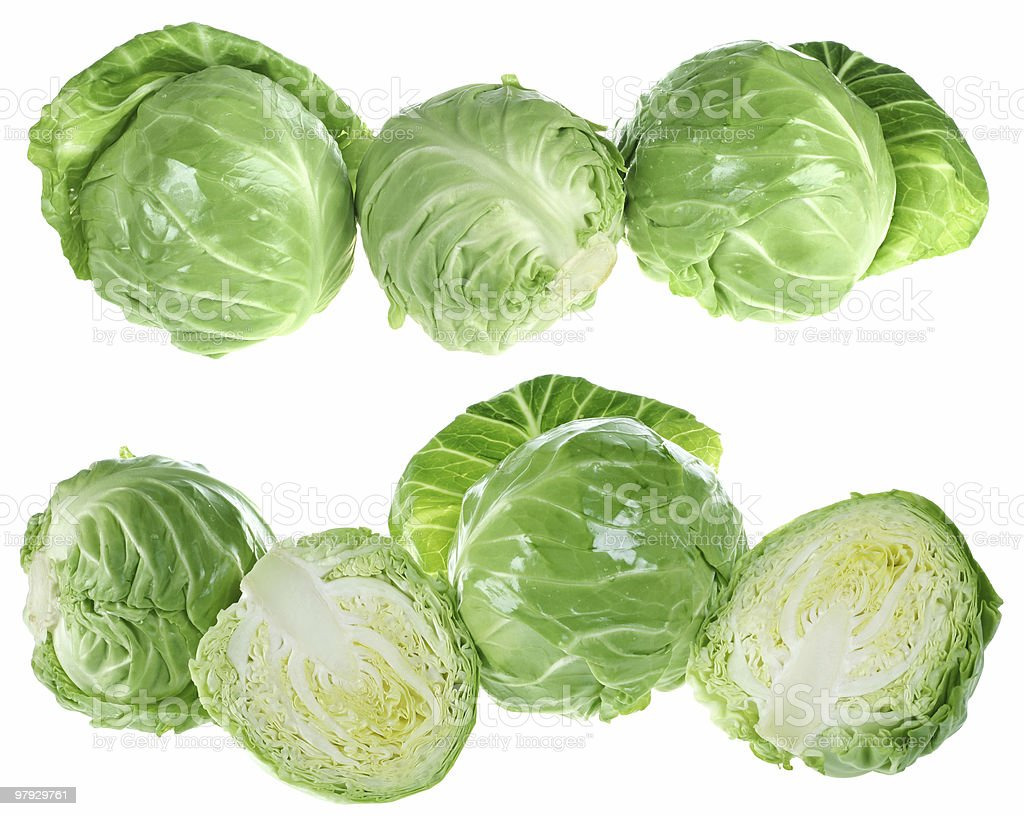 Cabbage isolated royalty-free stock photo