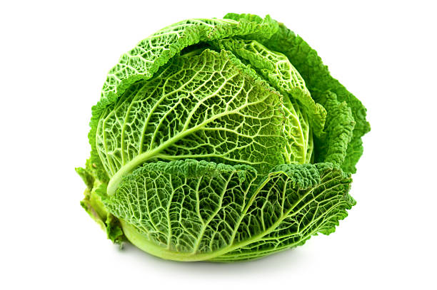 cabbage cabbage isolated on a white backgroundfruits and vegetables collection: cabbage stock pictures, royalty-free photos & images