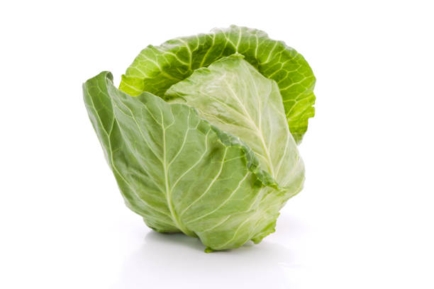 Cabbage – Foto