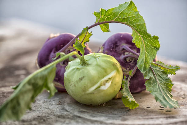 cabbage turnip stock photo