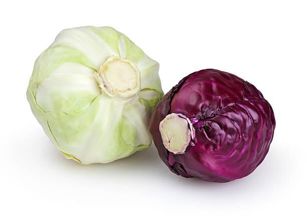 cabbages isolado no fundo branco - repolho verde - fotografias e filmes do acervo