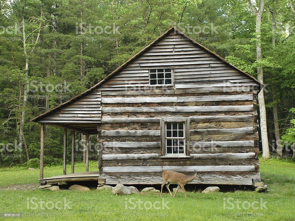 Cabin doe stock photo
