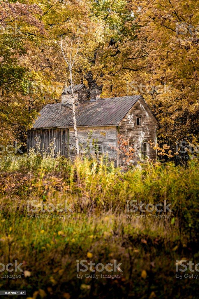 Cabane au Canada - Photo