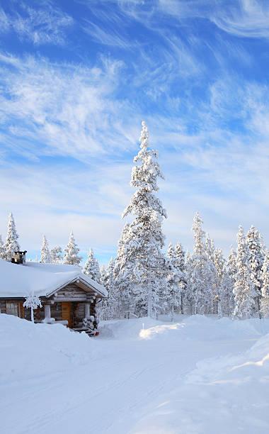 a cabin in the forest covered in snow  - pine forest sweden bildbanksfoton och bilder