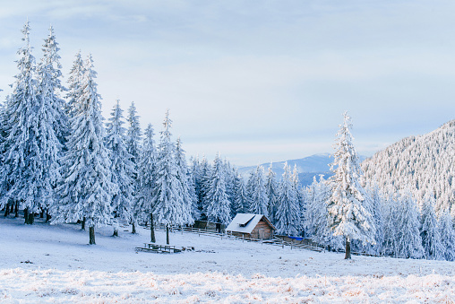 istock Cabin in the mountains in winter. Mysterious fog. In anticipation of holidays. Carpathians. Ukraine, Europe 853797200