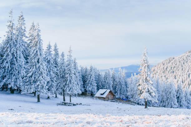 hütte in den bergen im winter. geheimnisvoller nebel. im vorgriff auf urlaub. karpaten. ukraine, europa - schönen abend bilder stock-fotos und bilder