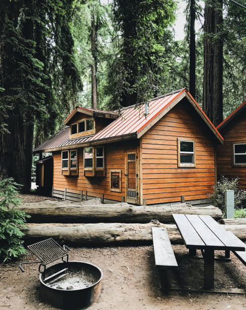 cabin in the pacific northwest - california cabin in the pacific northwest - california bungalow stock pictures, royalty-free photos & images