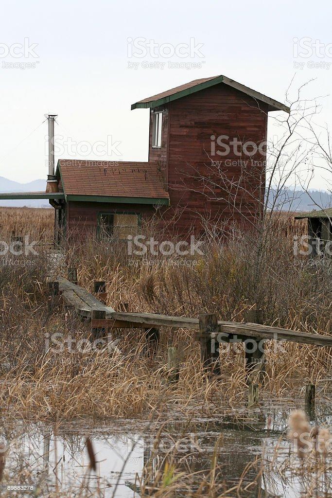 Cabina en la ciénaga foto de stock libre de derechos