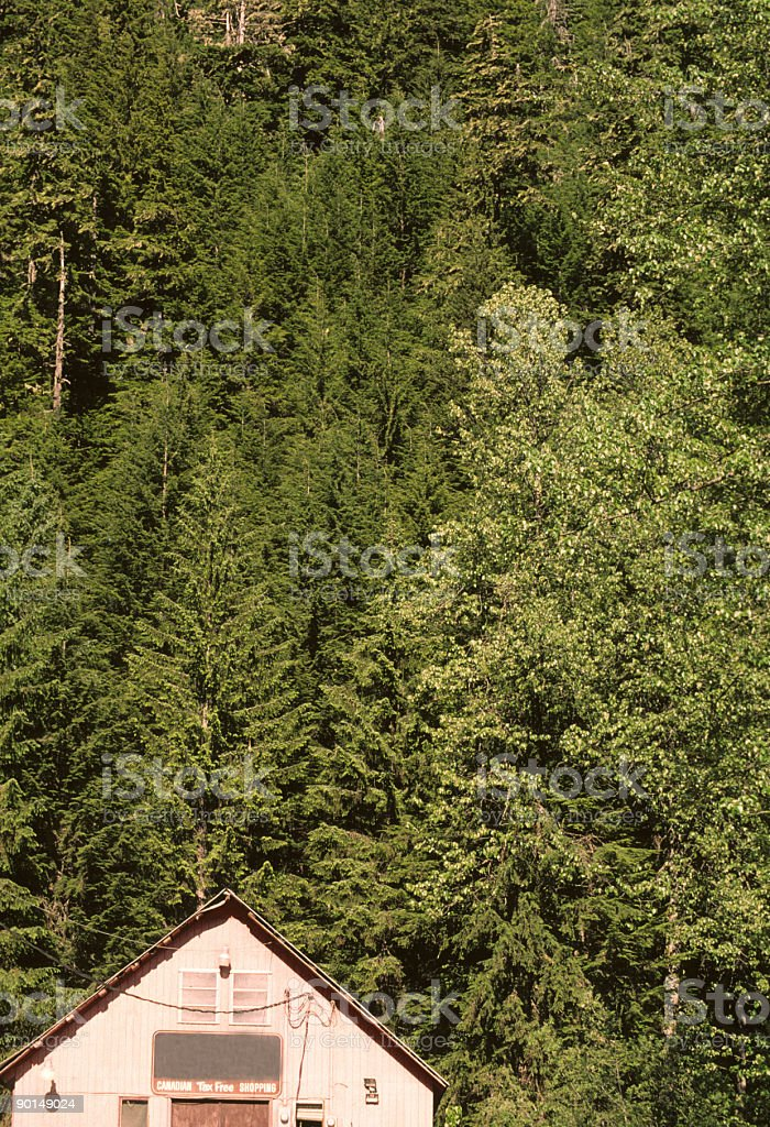 Cabin in the woods, Hyder Alaska stock photo