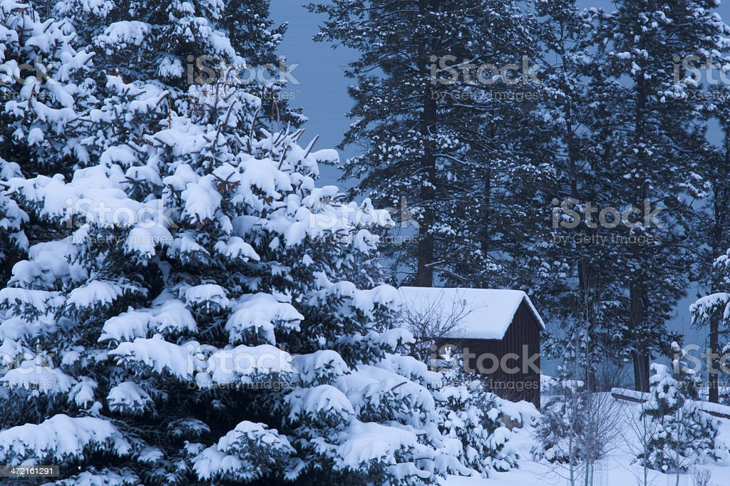 Cabin In The Woods - Winter Forest Snow Trees Night stock photo