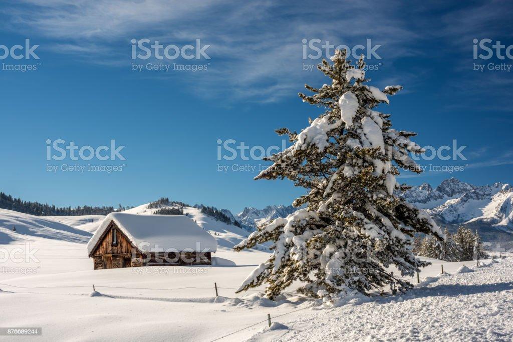 Cabin near Stanley Idahi winter with snow covered pine tree stock photo