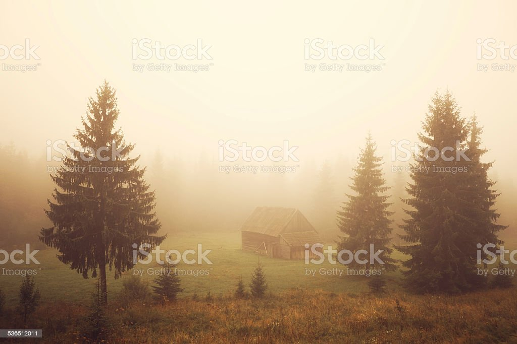 Cabin on the field stock photo
