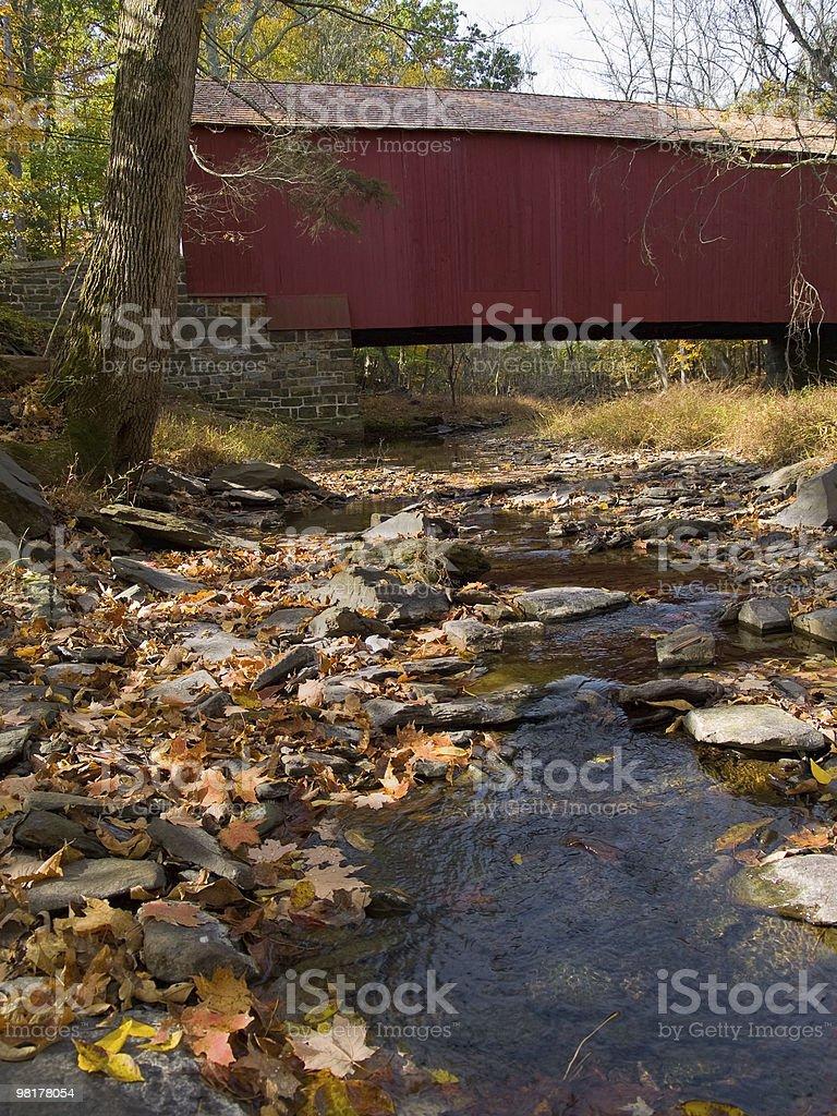 Cabin Run Covered Bridge 4 royalty-free stock photo