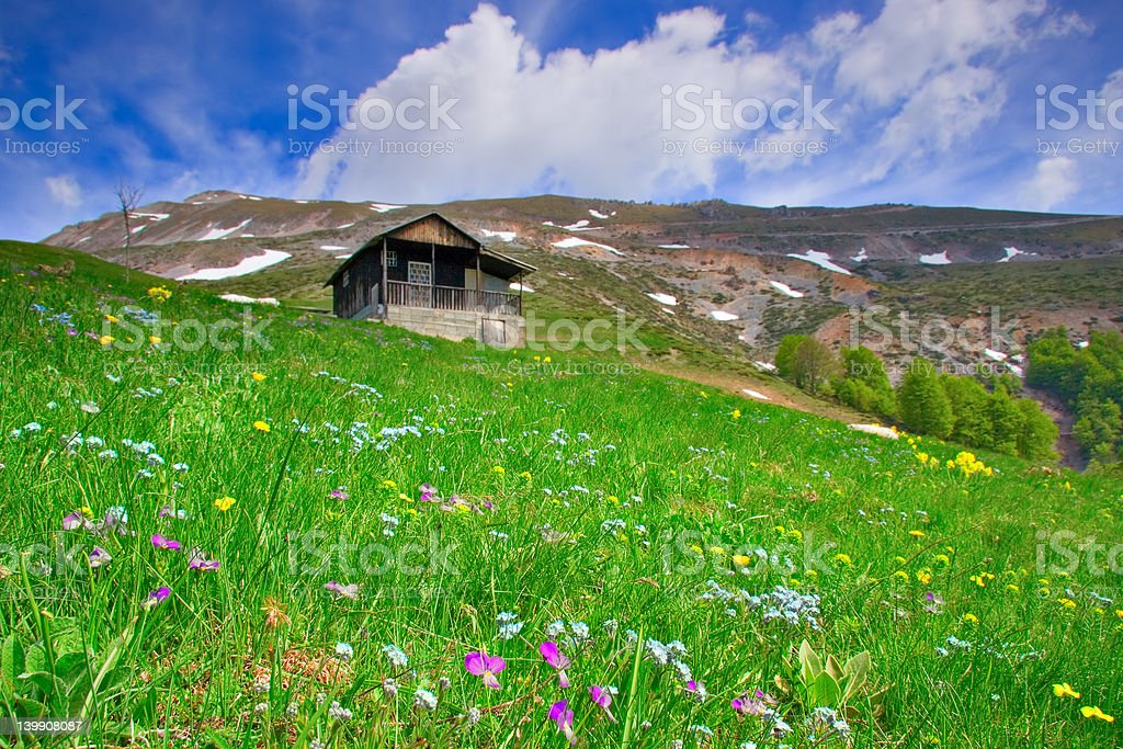Cabin up in the mountains and a flower meadow royalty-free stock photo