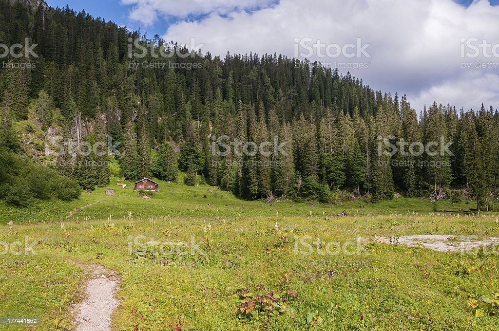 Cabine by the forest royalty-free stock photo