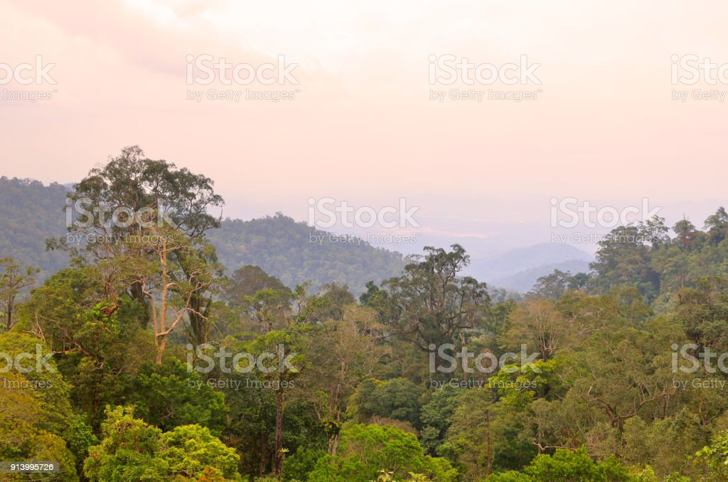 Cable car ferrying passengers up and down the mountain stock photo