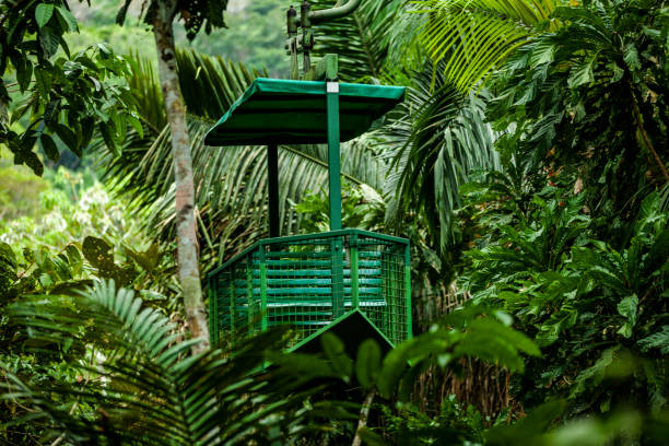 cable car transportation at the gamboa rainforest national park, panama stock photo