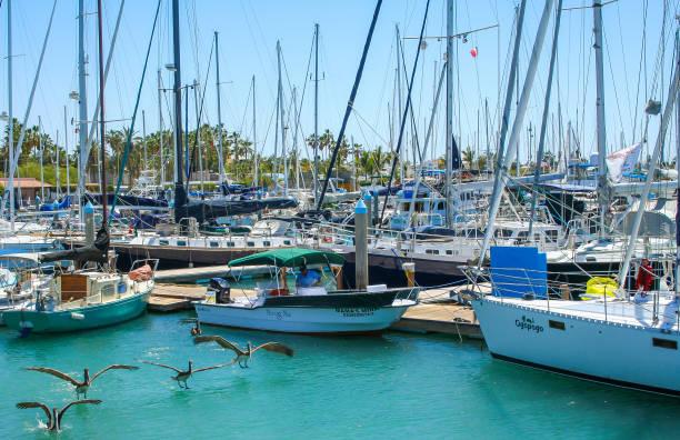 Cabo San Lucas - Baja California Sur stock photo