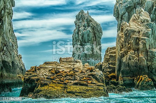 Sea lions bask under the Mexican Sun at Land's End, Cabo San Lucas, Baja California Sur, México.