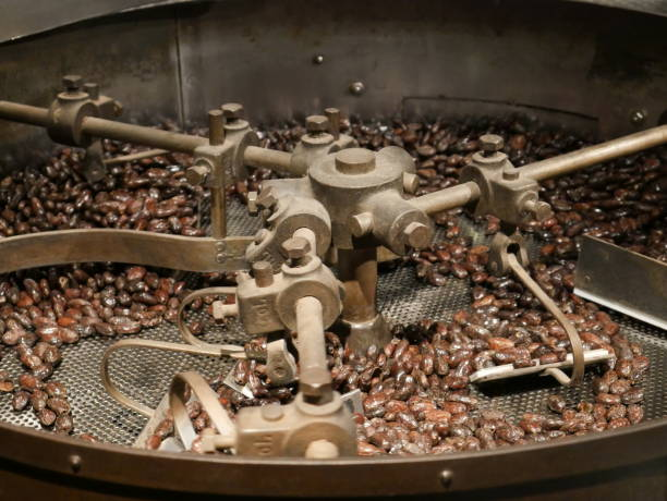 Cacao beans in roasting machine Cacao beans in roasting machine cocoa bean stock pictures, royalty-free photos & images