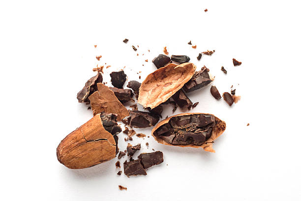 Cacao Beans Cacao Beans on white cacao fruit stock pictures, royalty-free photos & images