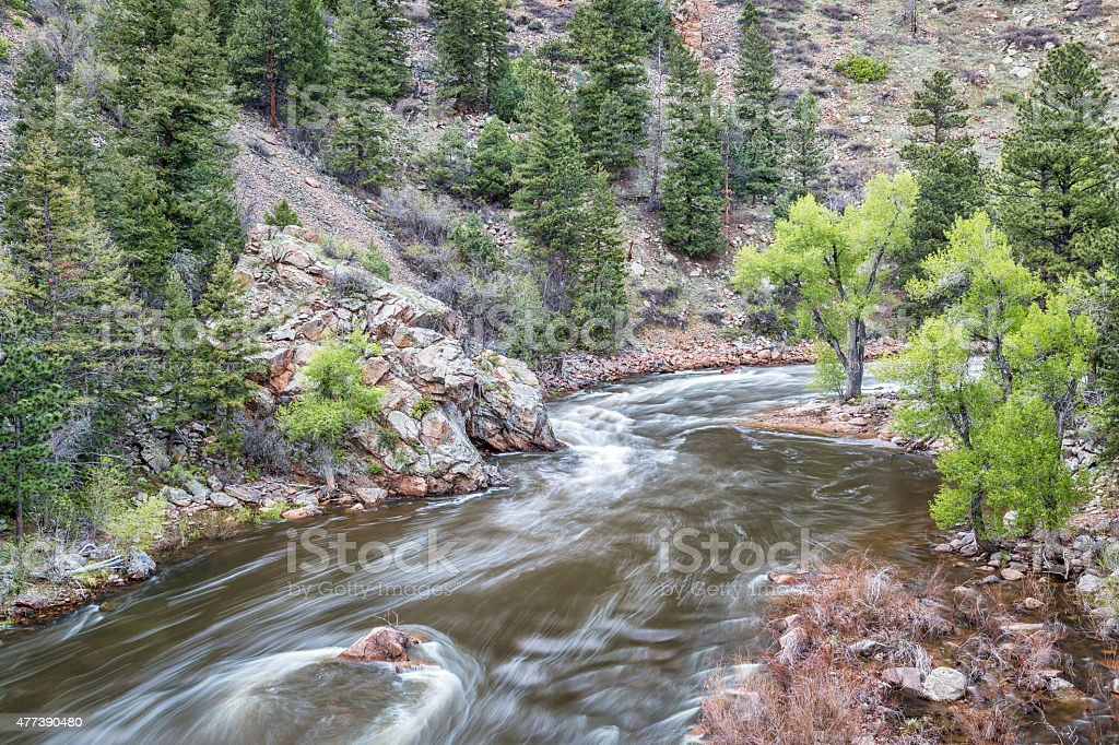 Cache la Poudre River in Rocky Mountains stock photo