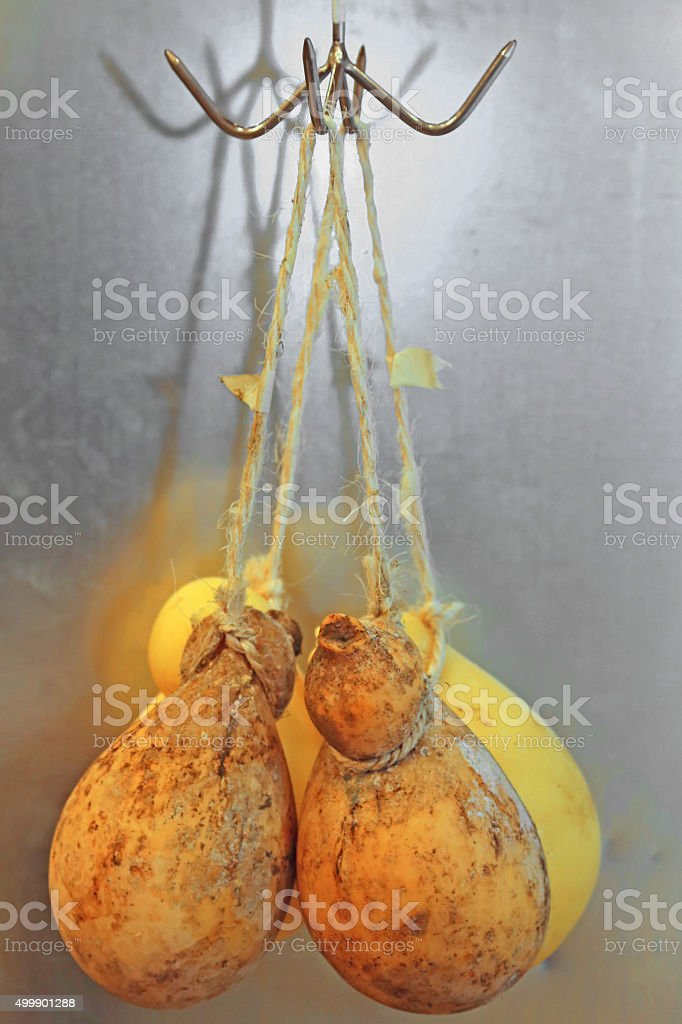 caciocavallo cheeses hanging with string for sale stock photo