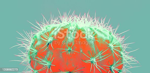 istock Cacti colorful fashionable mood. 1208562273