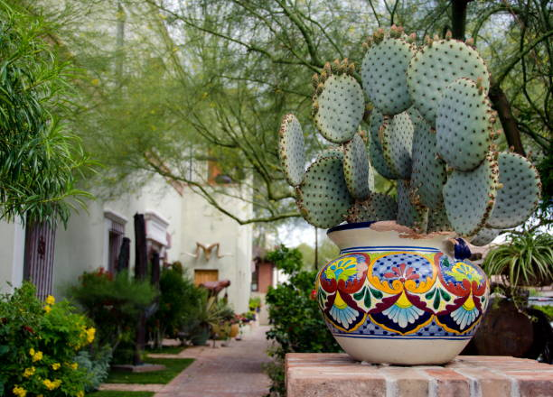 Cacti in pot decorating a street in Oldtown, Scottsdale stock photo