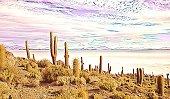 Illustration. Cacti on Isla Incahuasi, Salar de Uyuni, Bolivia. Island is completely filled with cactus. Isla covered with giant cacti. Amazing landscape background on salt marsh in Bolivia