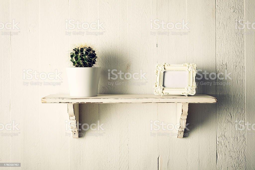 Kaktus Und Vintage Bilderrahmen Auf Regal - Stockfoto | iStock