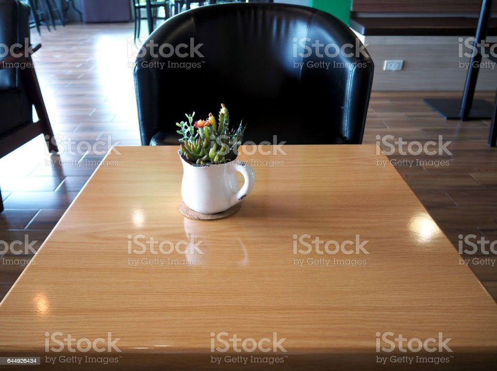 Cactus flower,Mammillaria Shumanni, Shlumbergera, hyacinths in the white cup, on wooden table, Soft Focus. stock photo