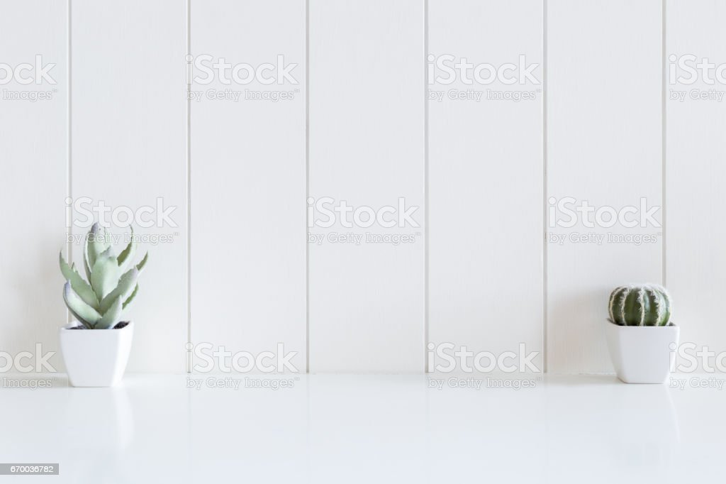 Cactus flowers vase on desk with copy space and white wooden...