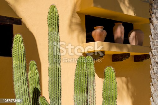 This is a view of a decorative growing in front of an adobe wall in a hotel in Cabo San Lucas in Baja Mexico.  This type of cactus is known as Pachycereus pringlei, or Mexican giant cardon, which is different than the Saguaro cactus that grows in Arizona.  This cactus tends to have more arms than a Saguaro but is indicative of the dry climate in the Baja peninsula.  This particular scene also includes some artistically placed pots on a windowsill.