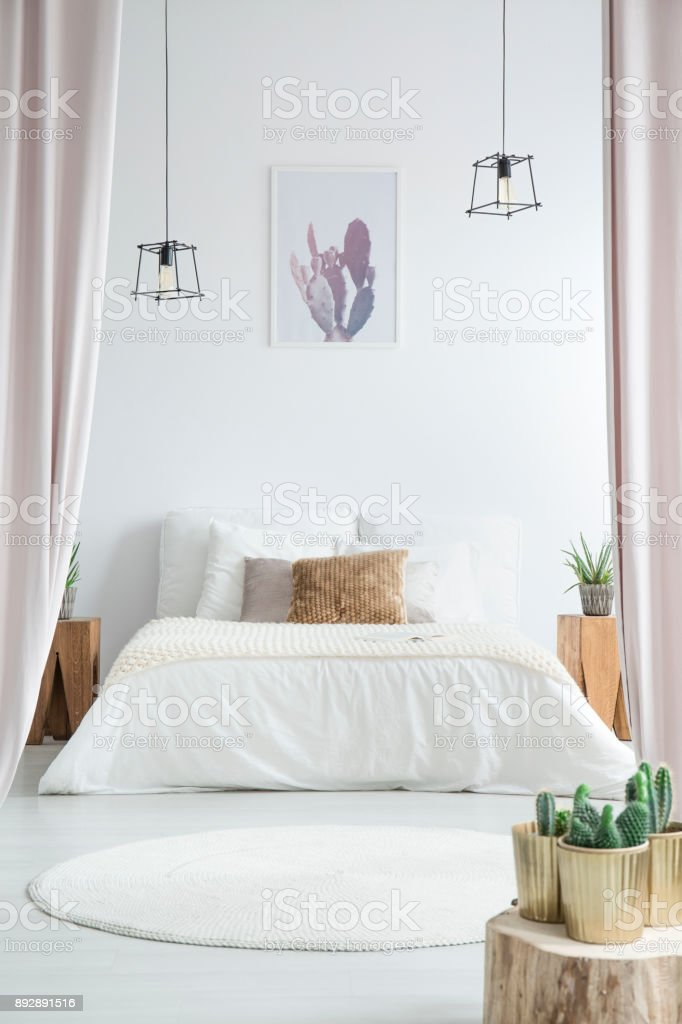 Cactus In White Bedroom Stock Photo Download Image Now Istock