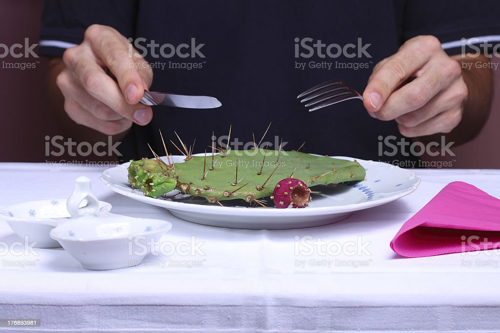 Cactus on a plate royalty-free stock photo