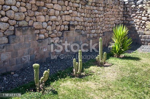 Cactus Plants Surrounded By An Inca Wall In Cusco, Peru